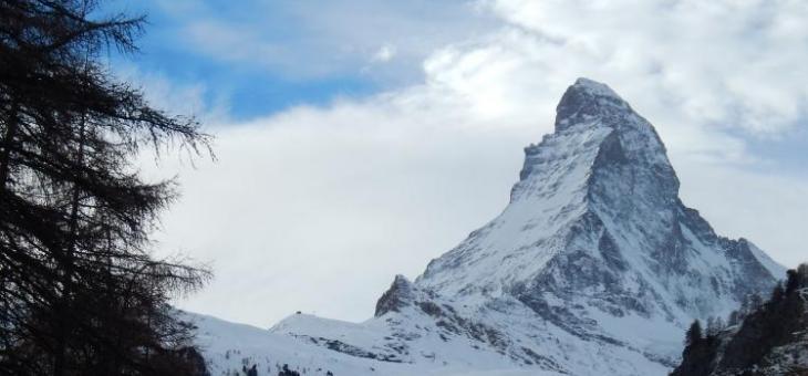 Foto do pico da Montanha Matterhorn - Suiça, coberto de neve, com pinheiro em primeiro plano