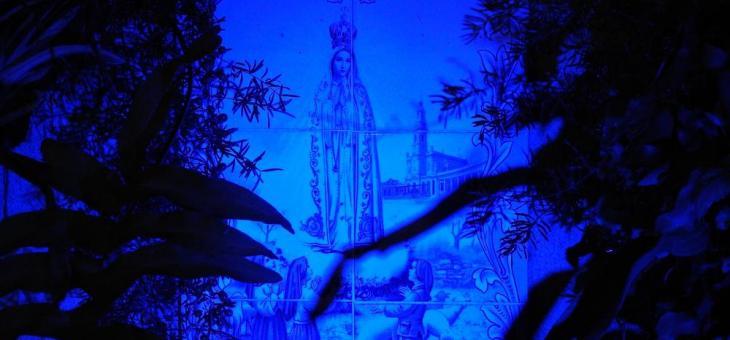Foto azulada de azulejo com imagem de Nossa Senhora de Fátima. À frente, nas laterais, a planta Ora-Pro-Nóbis